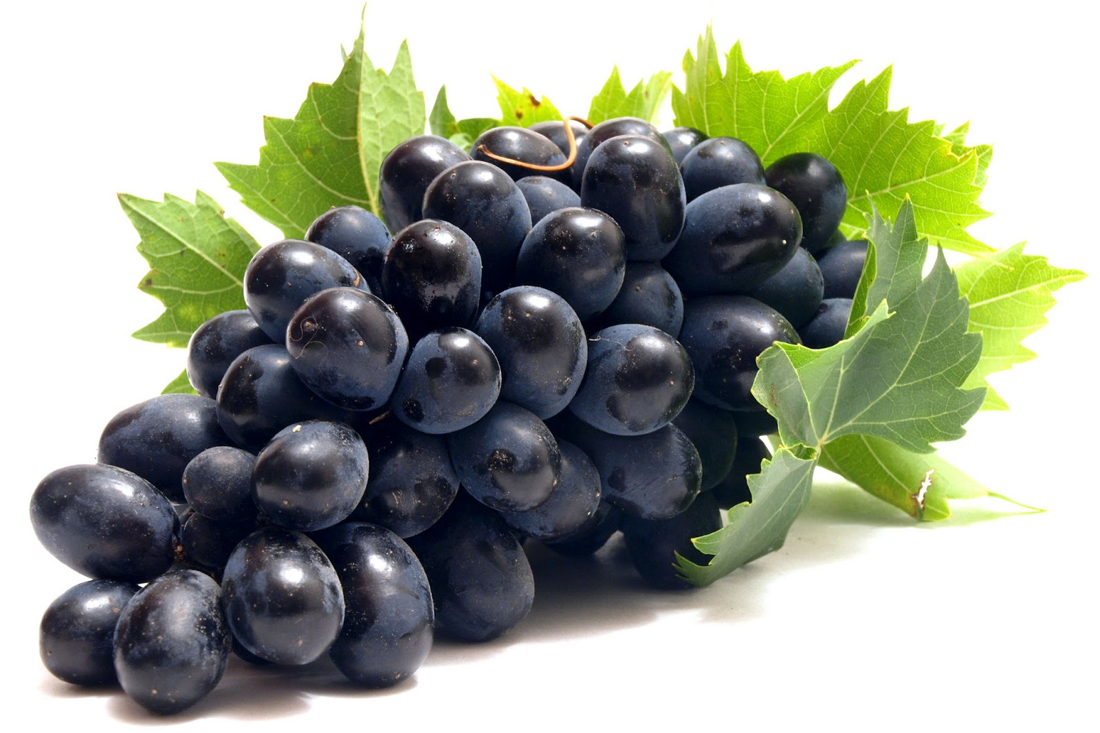 Artikel Terkait Grapes Fruit Wallpaper Pictures 1600x1066