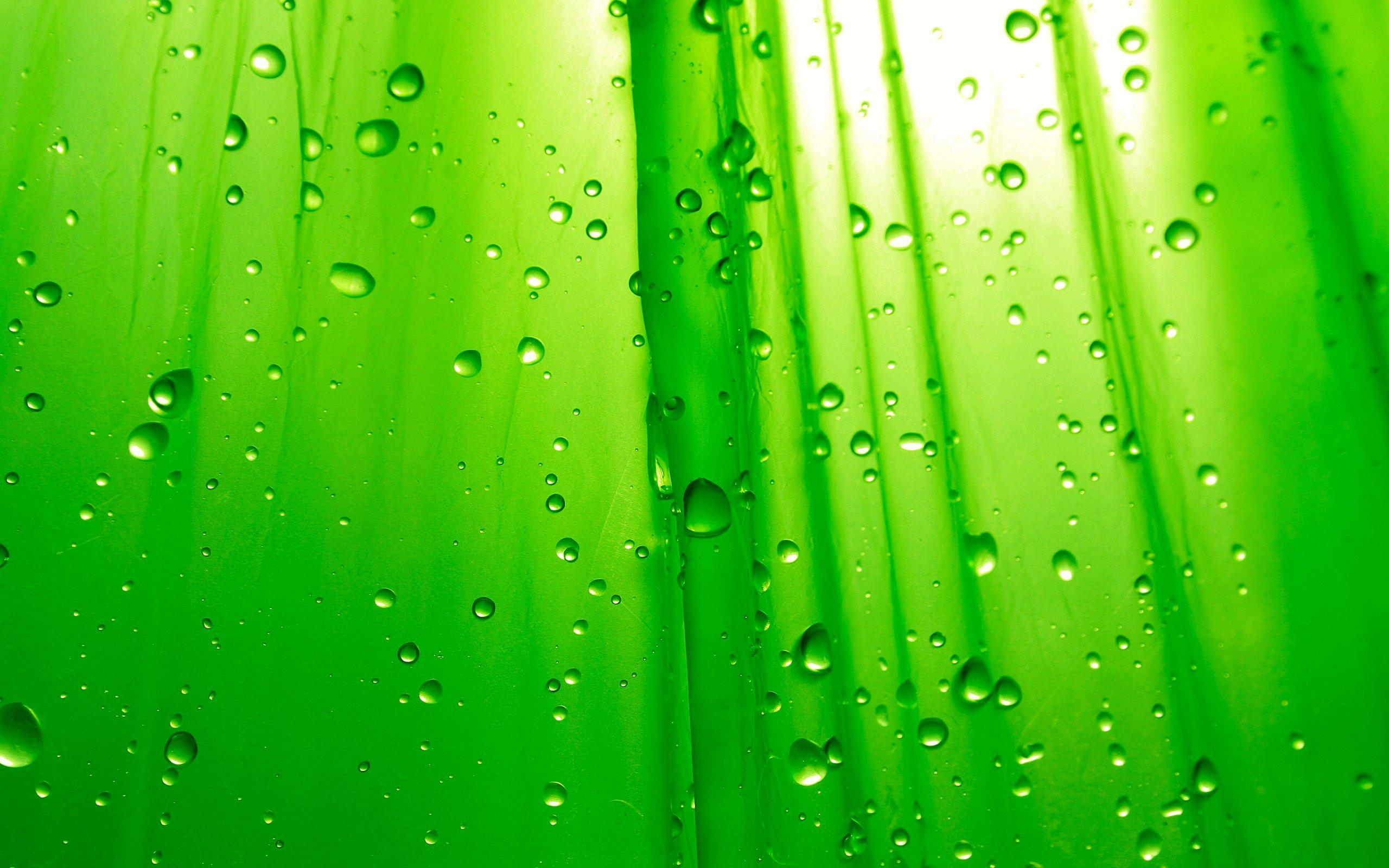 Hd wallpaper green - Description Green Hd Wallpaper Is A Hi Res Wallpaper For Pc Desktops