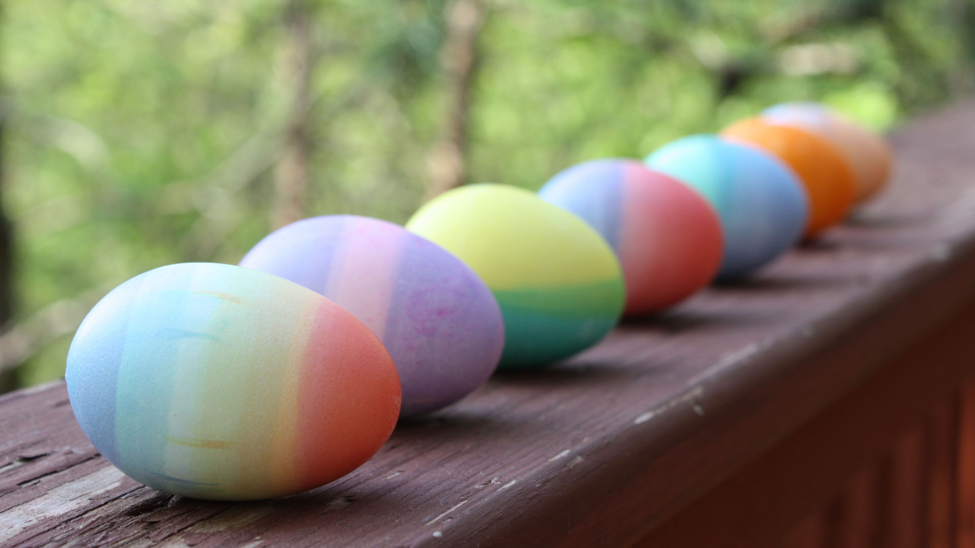 Easter Eggs Wallpapers HD Wallpapers 1920x1080