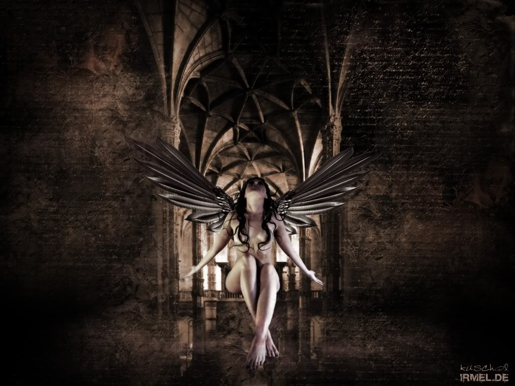 Dark Fairy 1200x800 800x1200 Wallpaper Background