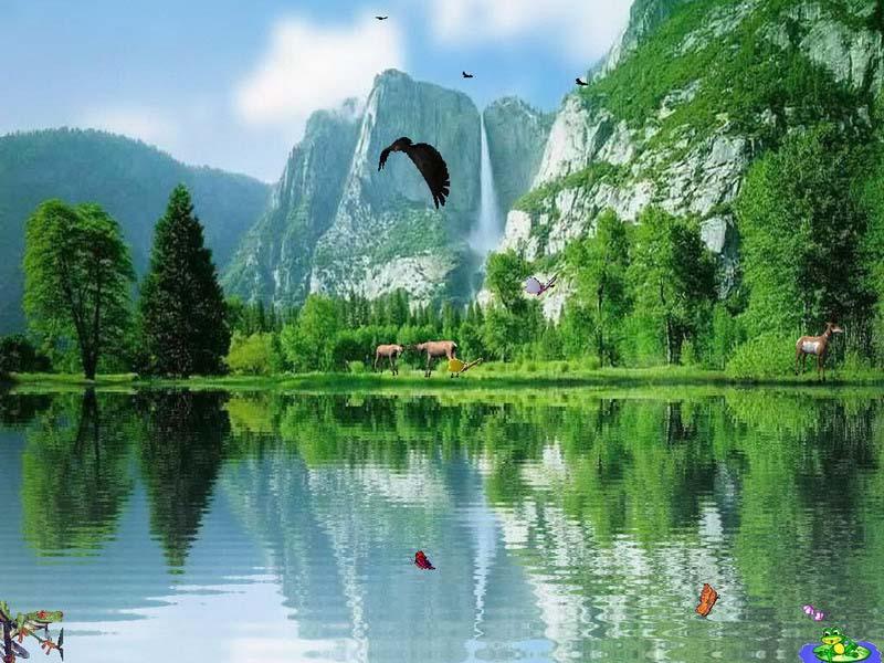 Popular Screensaver   Charming Waterfalls   FullScreensaverscom 800x600