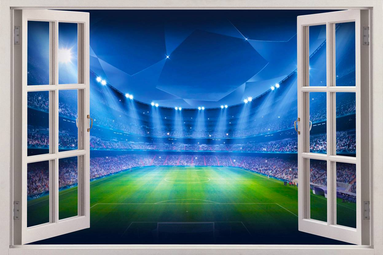 Football Stadium View 3D Window Decal Wall Sticker Decor Art Wallpaper 1247x831