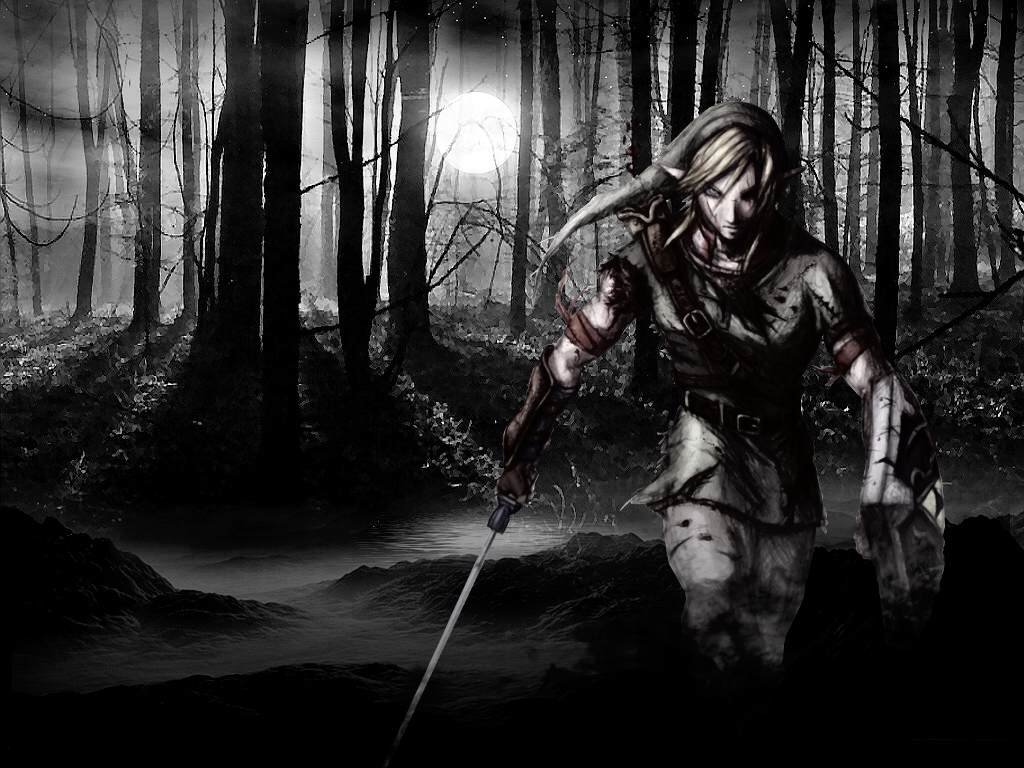 Dark Link And Link Fighting Dark link by nolan989890 1024x768