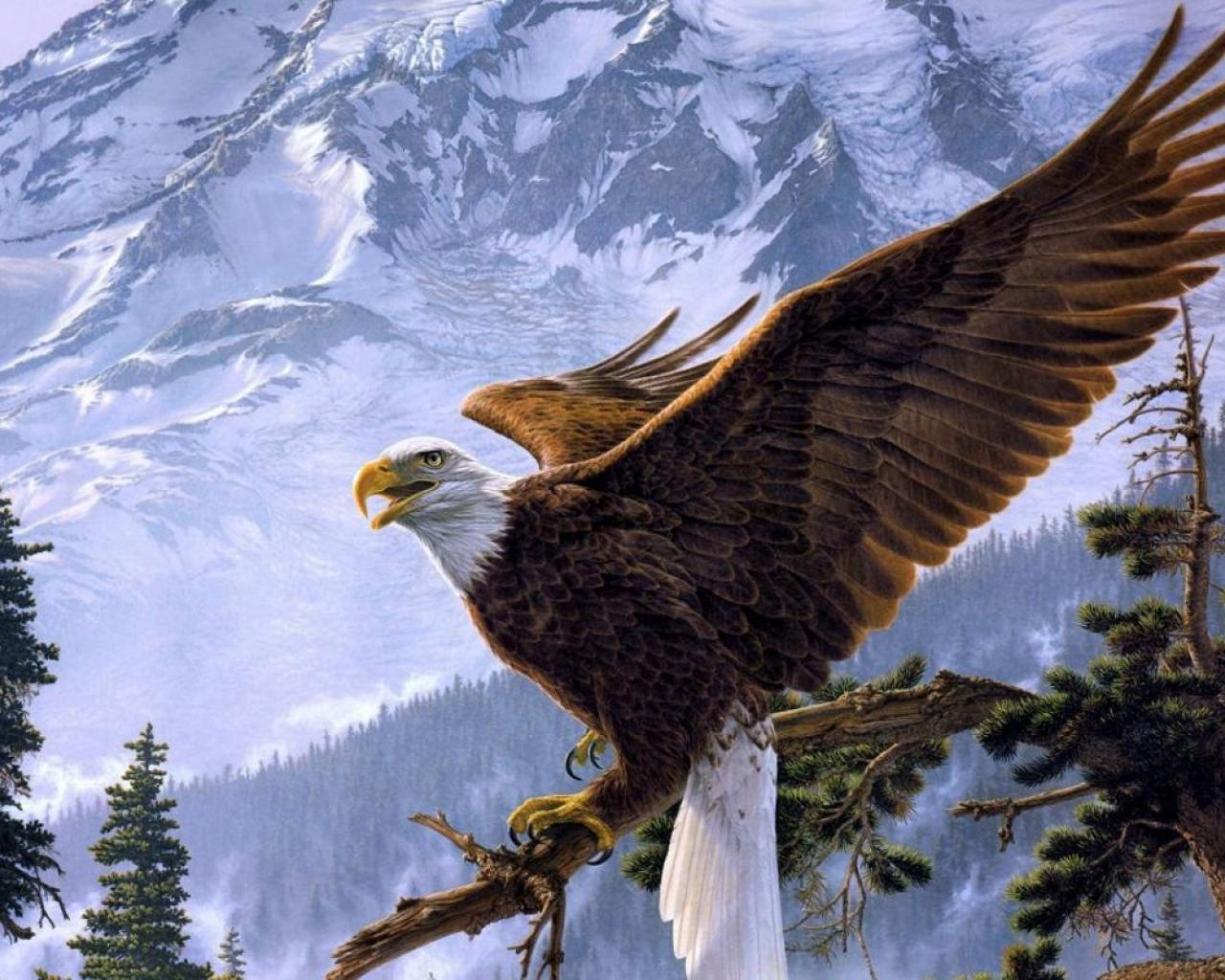 eagle 1280x1024 wallpaper - photo #20