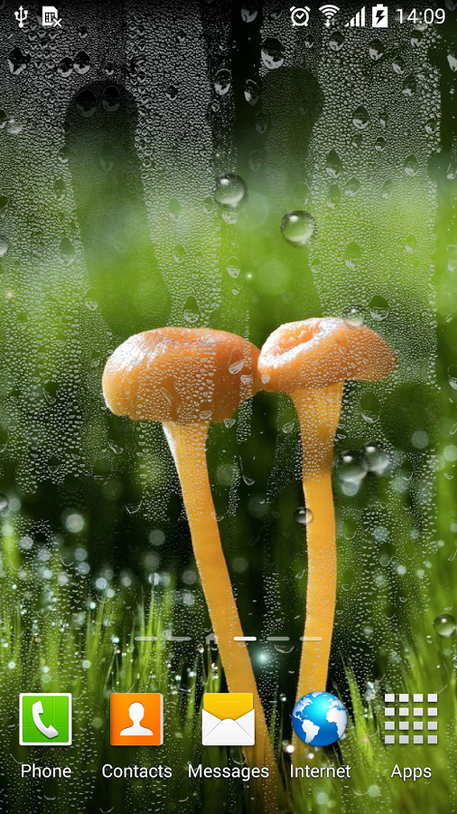 Rain Live Wallpaper   Android Apps on Google Play 506x900