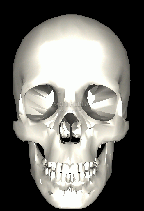 Screenshot 1 of Ancient Skull Screensaver 3D 495x727