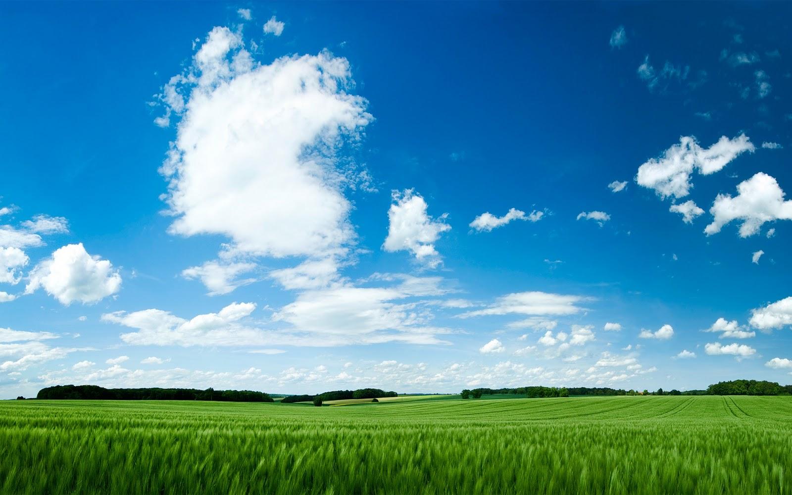 Field Peaceful Landscape HD Wallpapers Epic Desktop Backgrounds 1600x1000