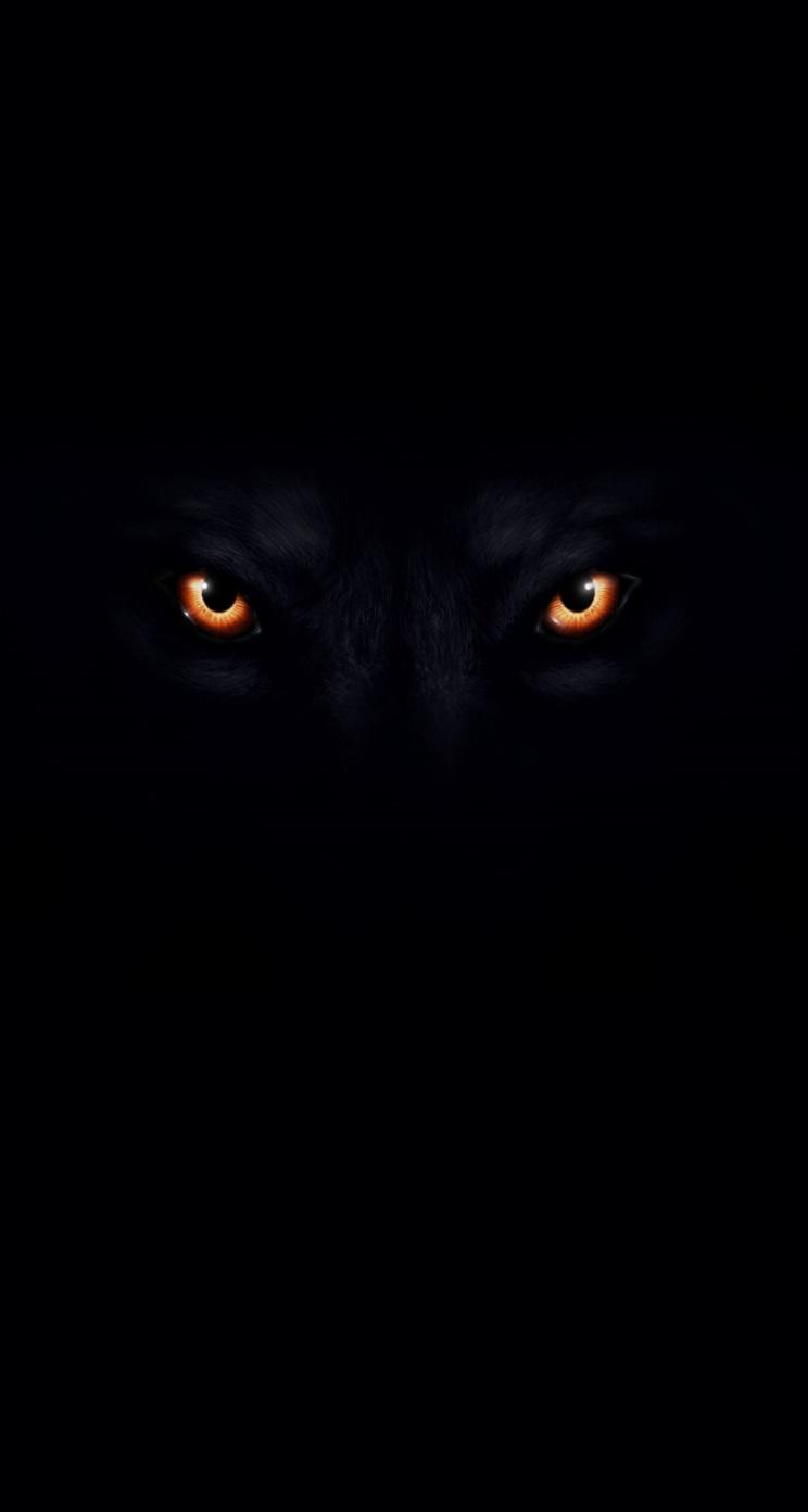 Black Wolf Wallpaper - WallpaperSafari