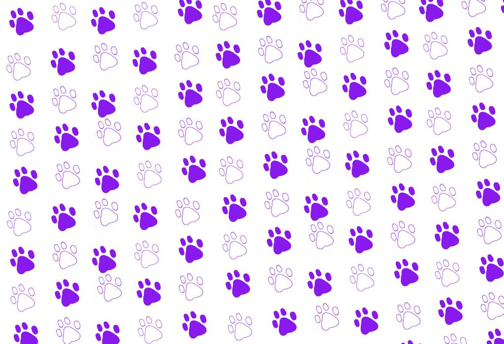 67+] Paw Print Wallpaper on WallpaperSafari