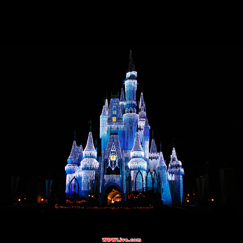 disney castle wallpaper 1327 hd wallpapersjpg 1024x1024