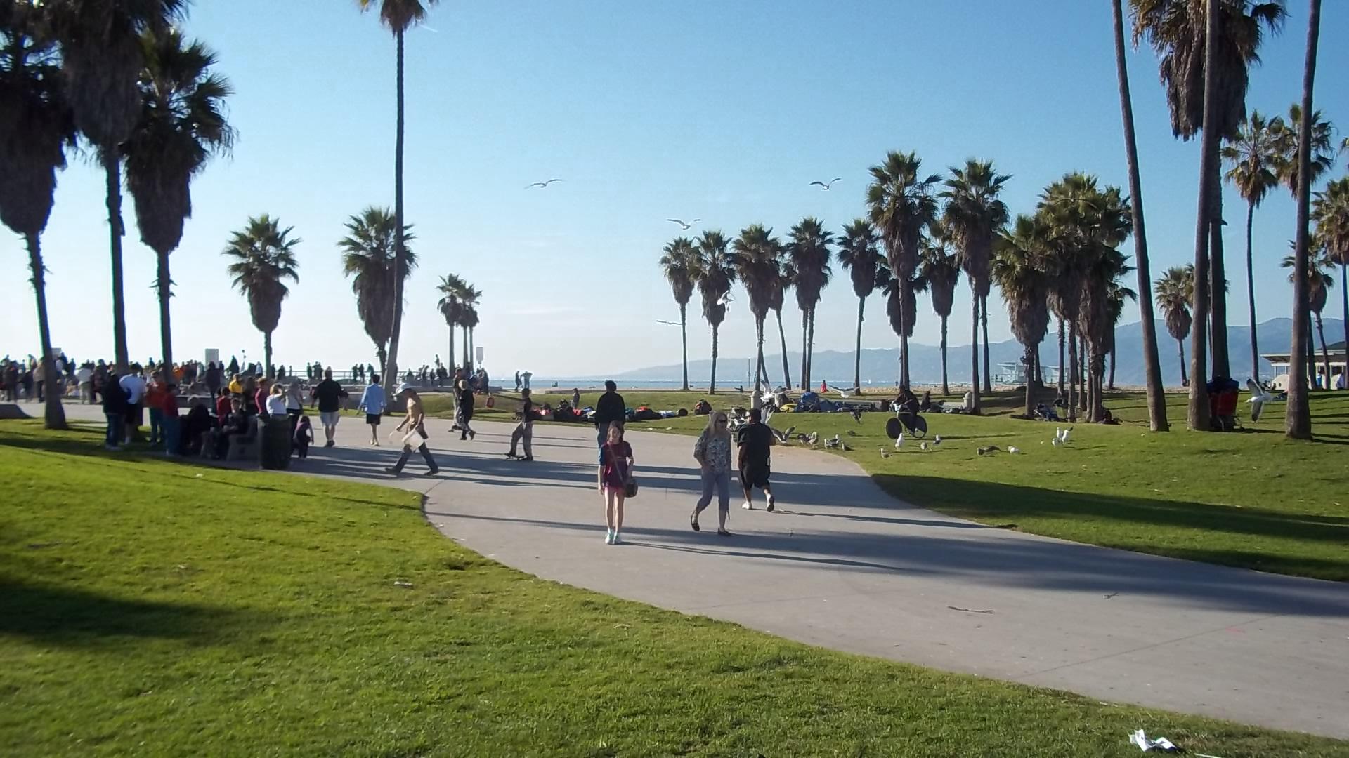 download image venice beach - photo #45