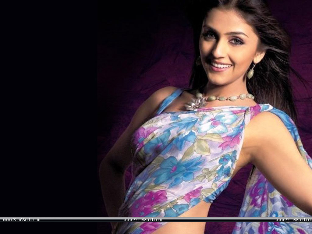 Aarti Chhabria in Sexy Saree 3 Wallpaper HD Wallpapers 1024x768
