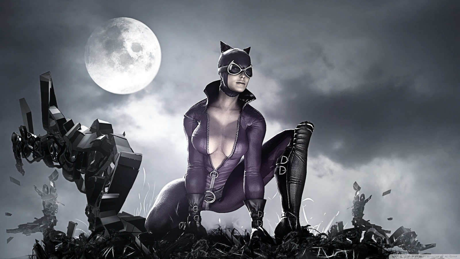 City Catwoman Hd Desktop Widescreen 1600x900 pixel City HD Wallpaper 1600x900