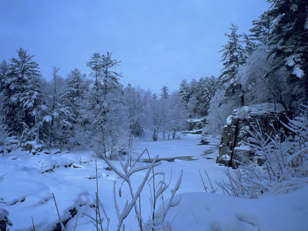 Winter Scene   Christmas Wallpaper 2735677 1024x768