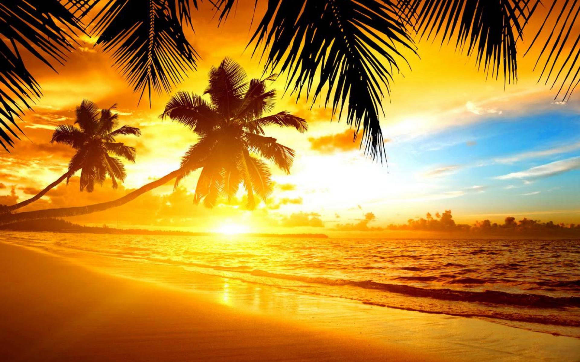 Large Tropical Island Sunset Wallpaper 1920x1200