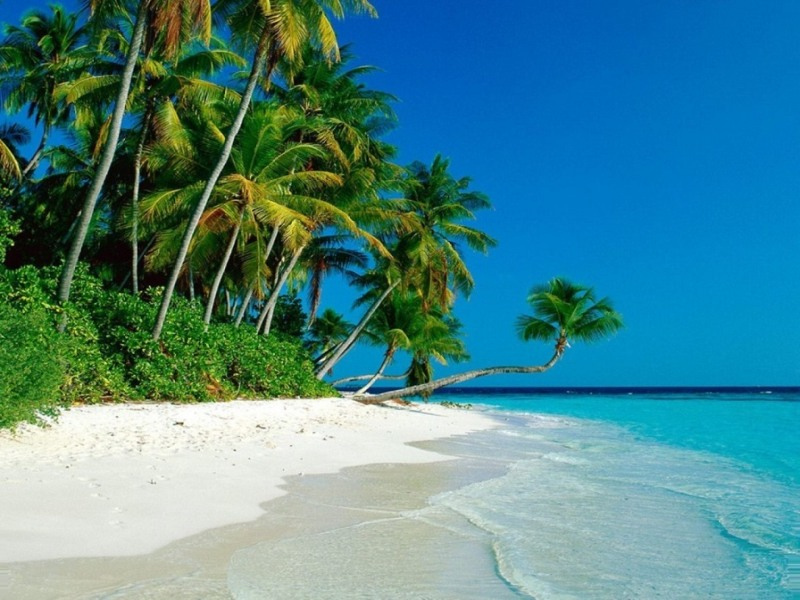 attractive beach screensaver wallpapers55com   Best Wallpapers 800x600