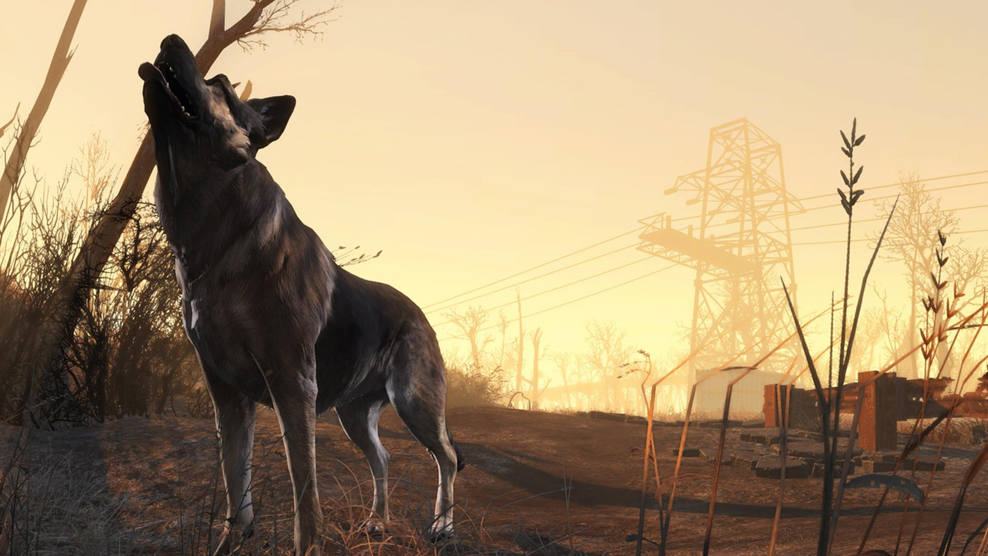 Fallout 4 HD Wallpaper Dogmeat 1920x1080