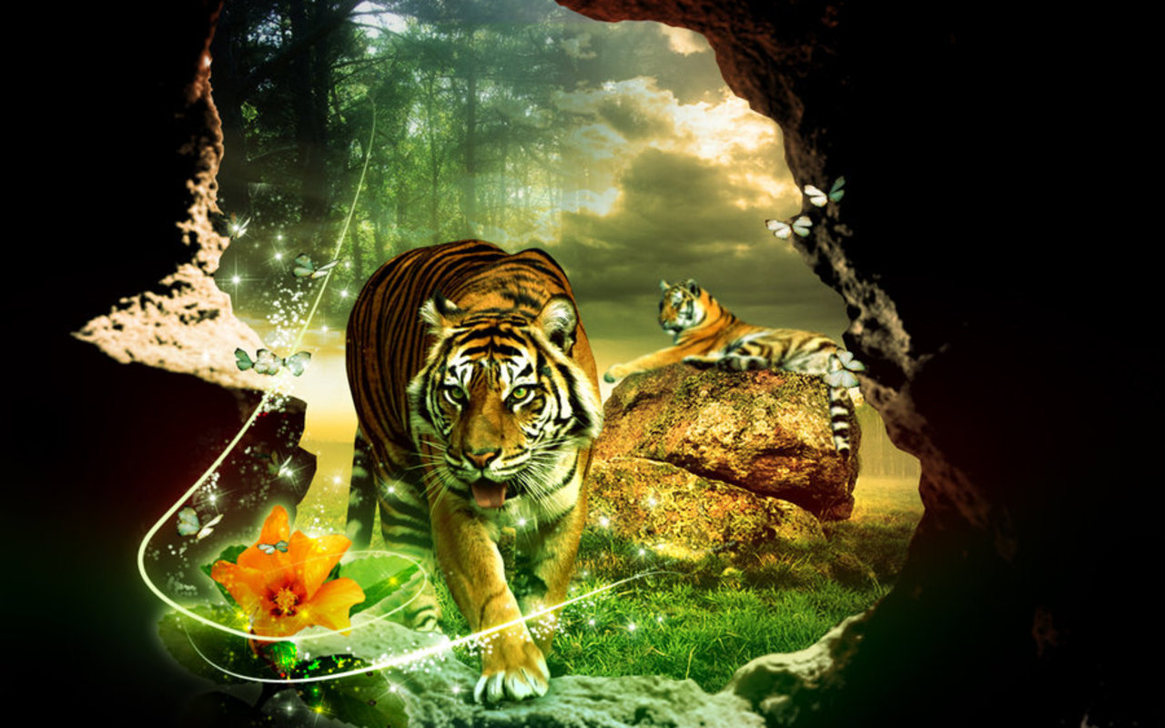 3D Tiger Wallpaper - WallpaperSafari
