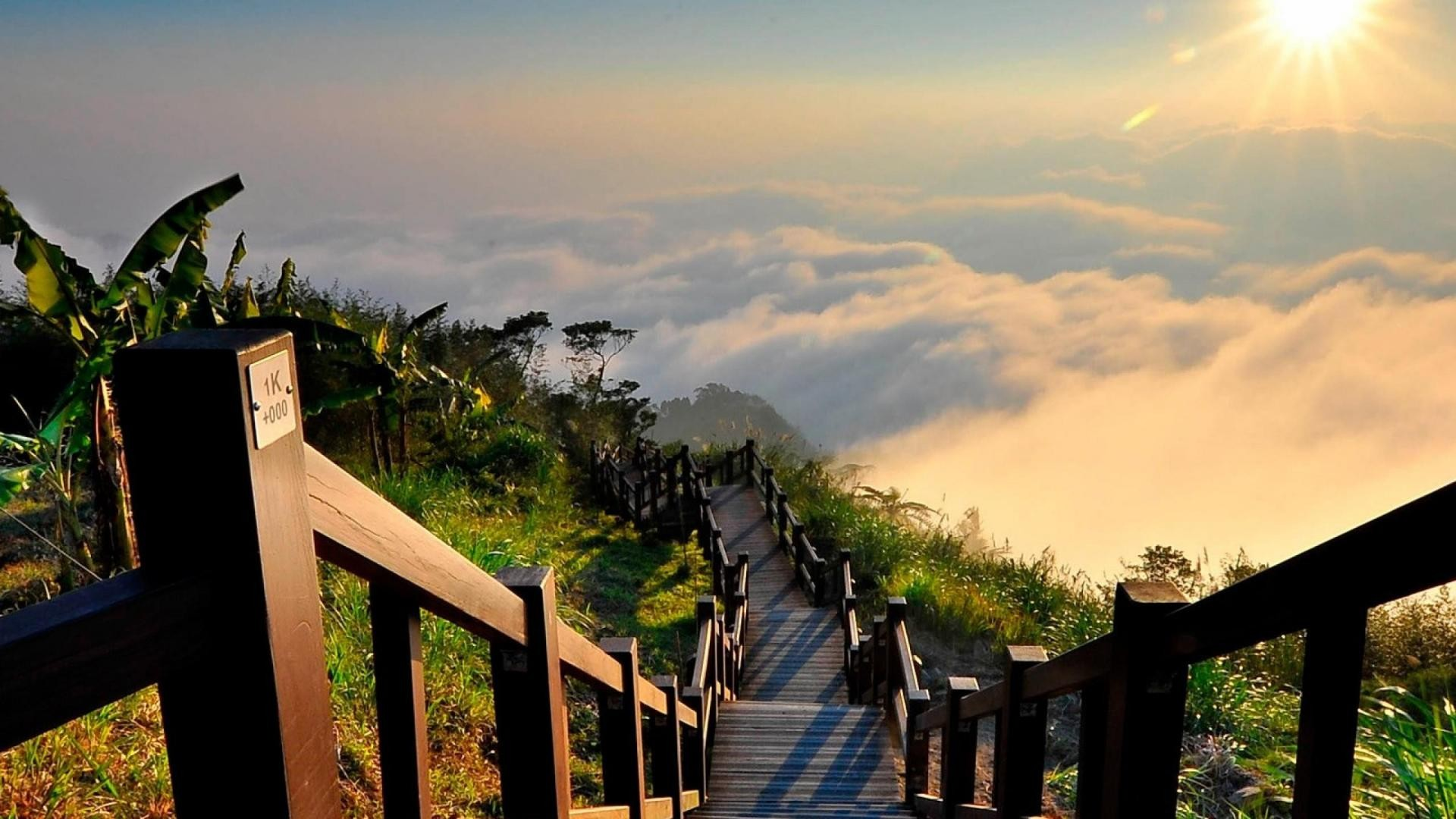 Yushan National Park HD Wallpaper   New HD Wallpapers 1920x1080