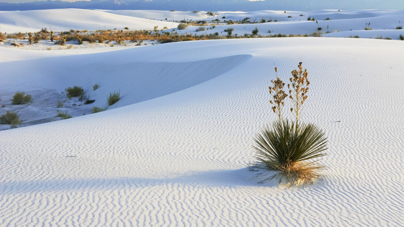 White Sands New Mexico wallpaper 12667 1366x768
