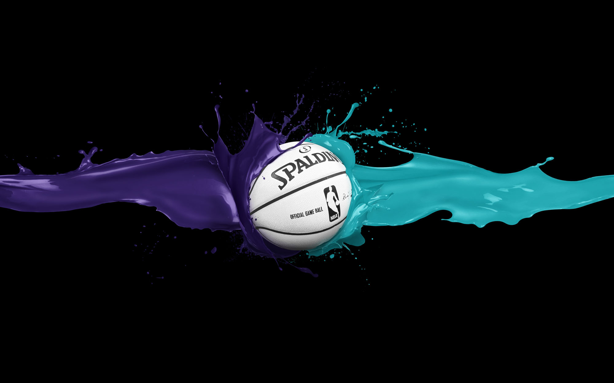 NBA Charlotte Hornets Ball Spalding wallpaper 2018 in Basketball 2000x1250