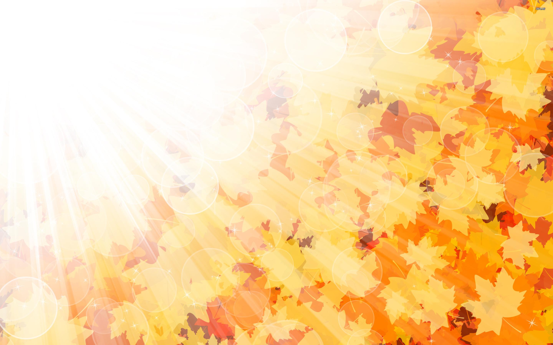 Nature   Seasons   Autumn the sunshine in autumn 046196 jpg 2880x1800