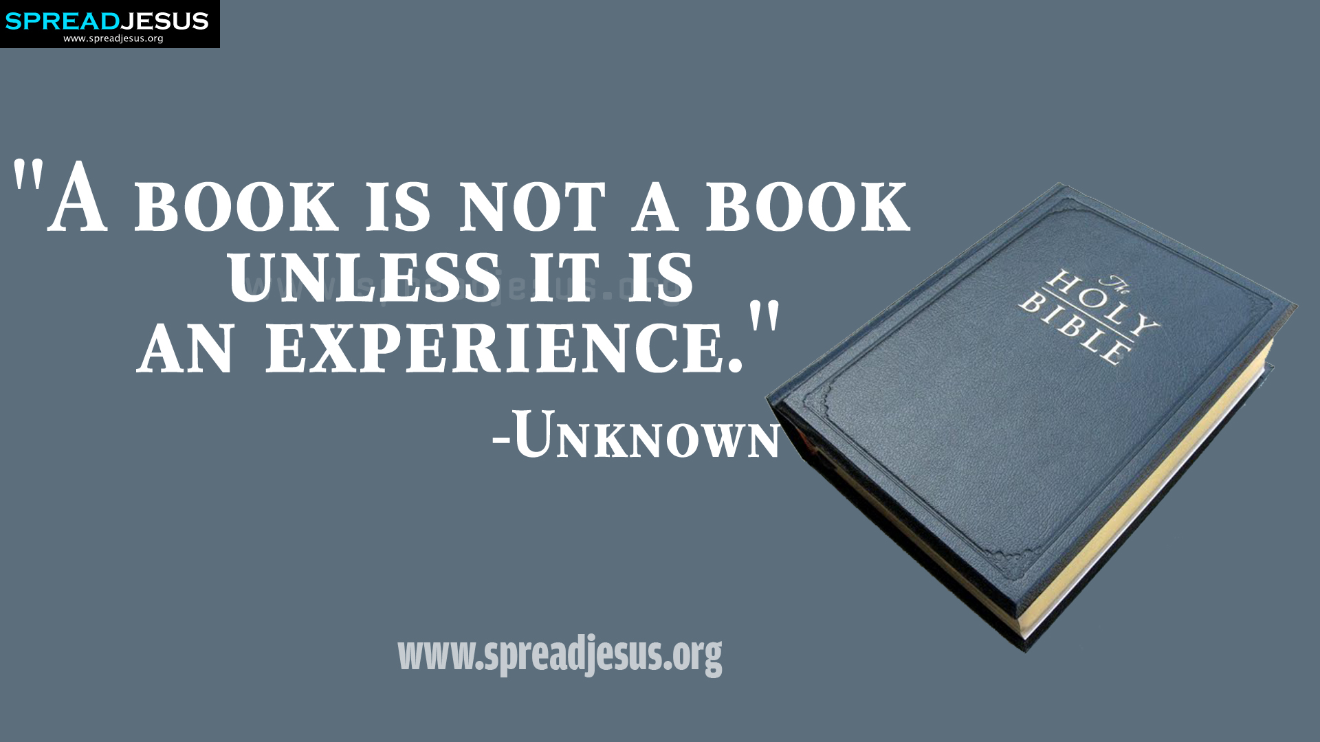 1920x1080px Quotes About Books Wallpaper Background Wallpapersafari