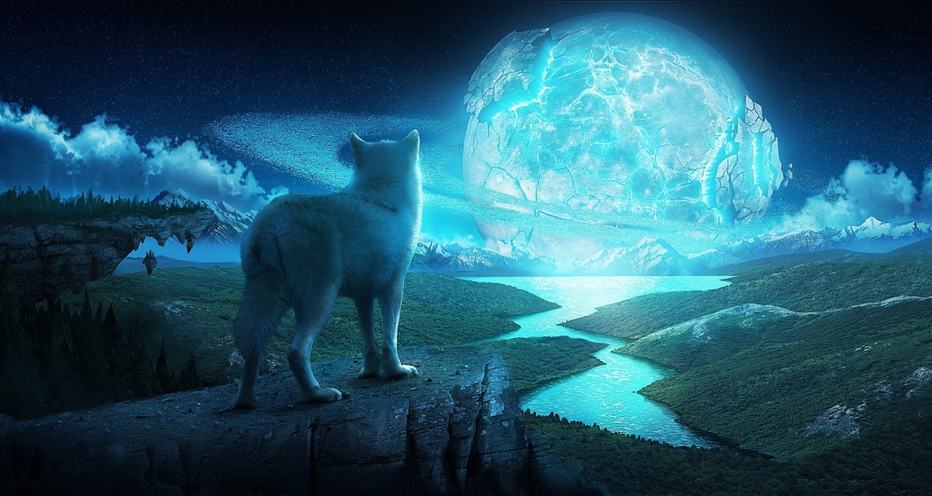 Wallpapers   Wolf and the Ice Planet by asdon   Customizeorg 1050x559