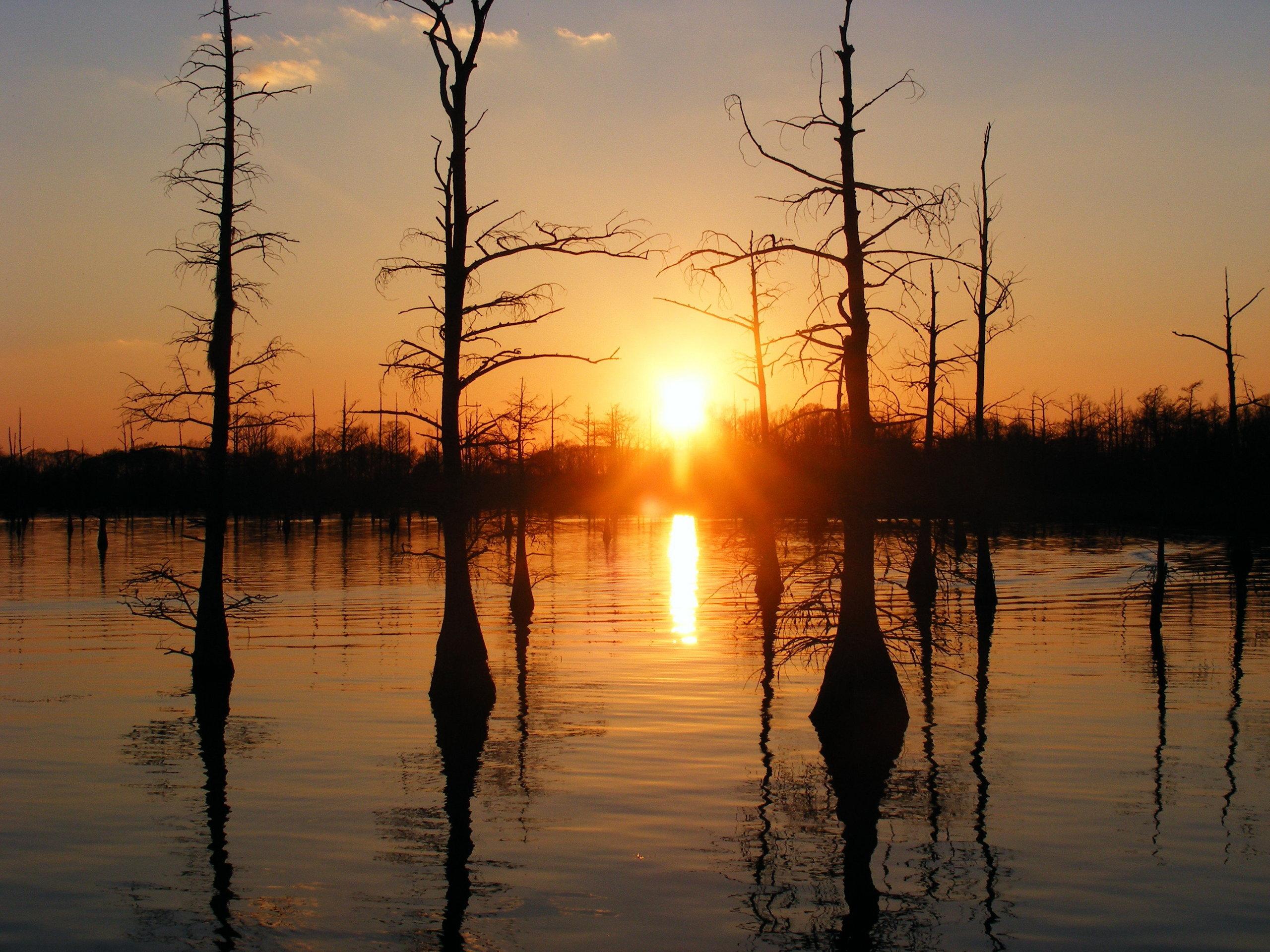 Black Bayou Monroe Louisiana   United States Of America Photo 2560x1920