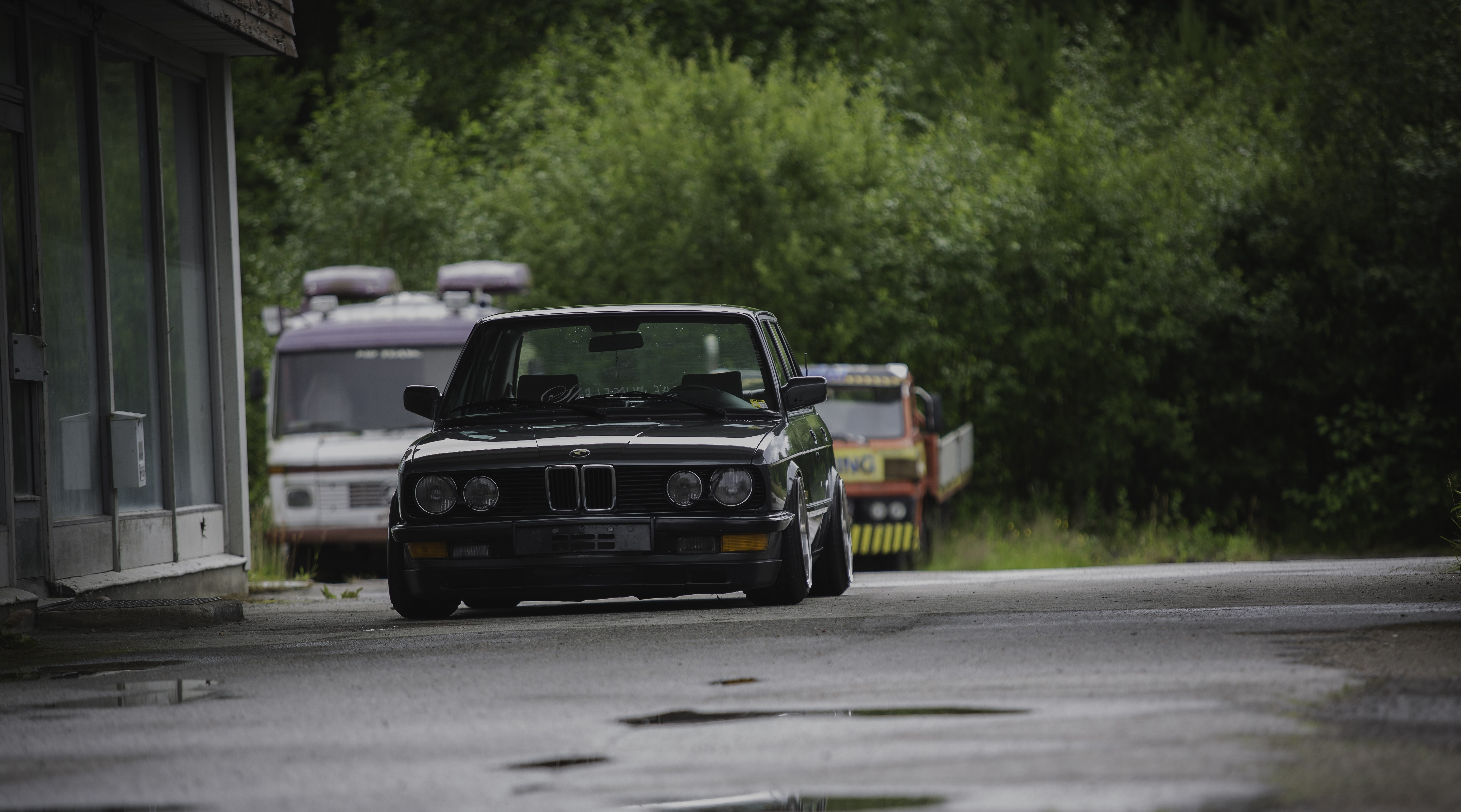 BMW E28 Stance Stanceworks Low Norway Summer Rain Trees 5760x3202