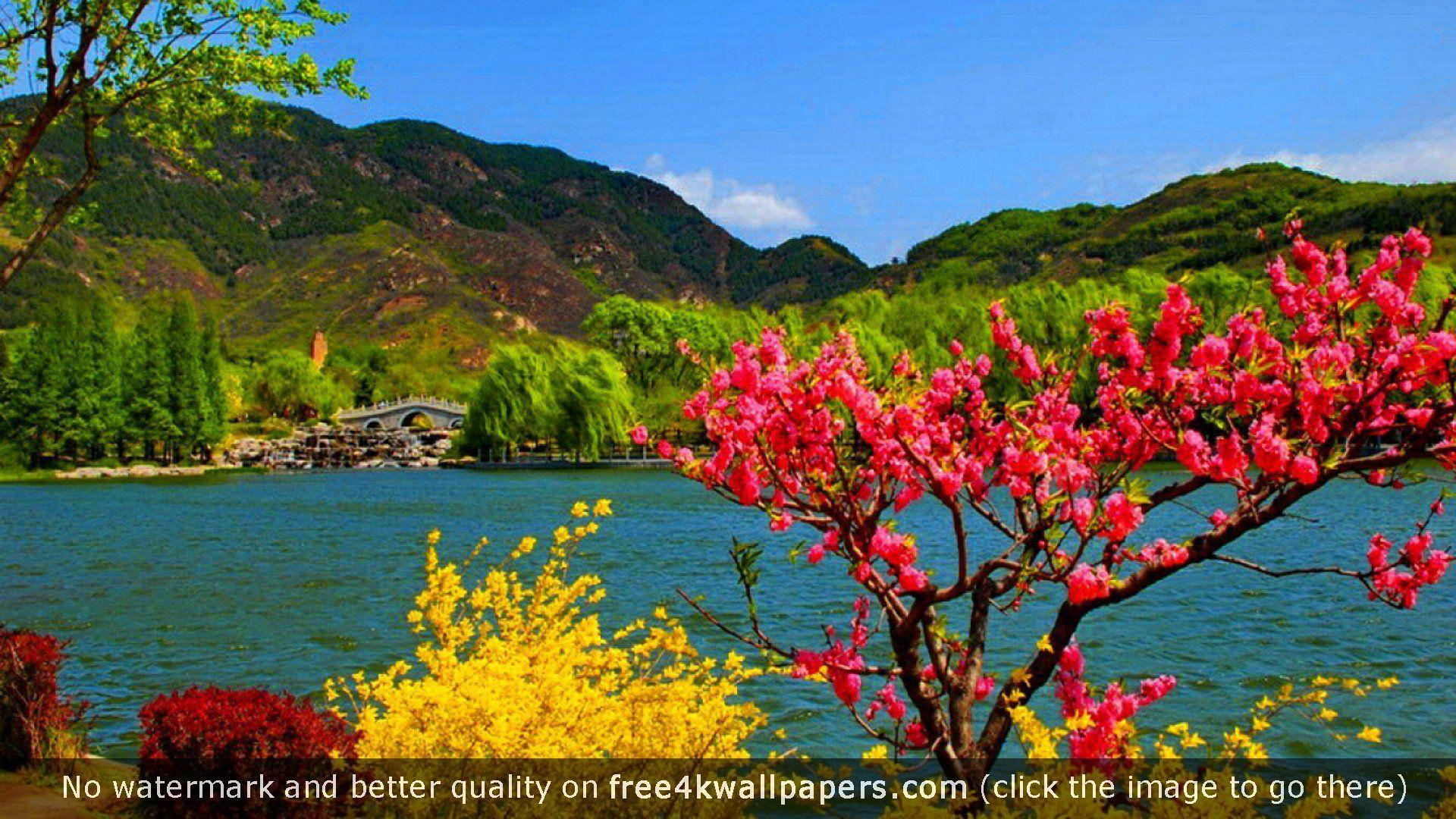 Hd wallpaper kashmir - Kashmir Hd Hd Wallpaper