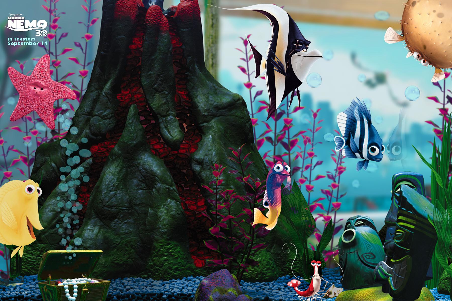 Finding Nemo D Animasi Hd Wallpaper: Disney 3D Wallpaper
