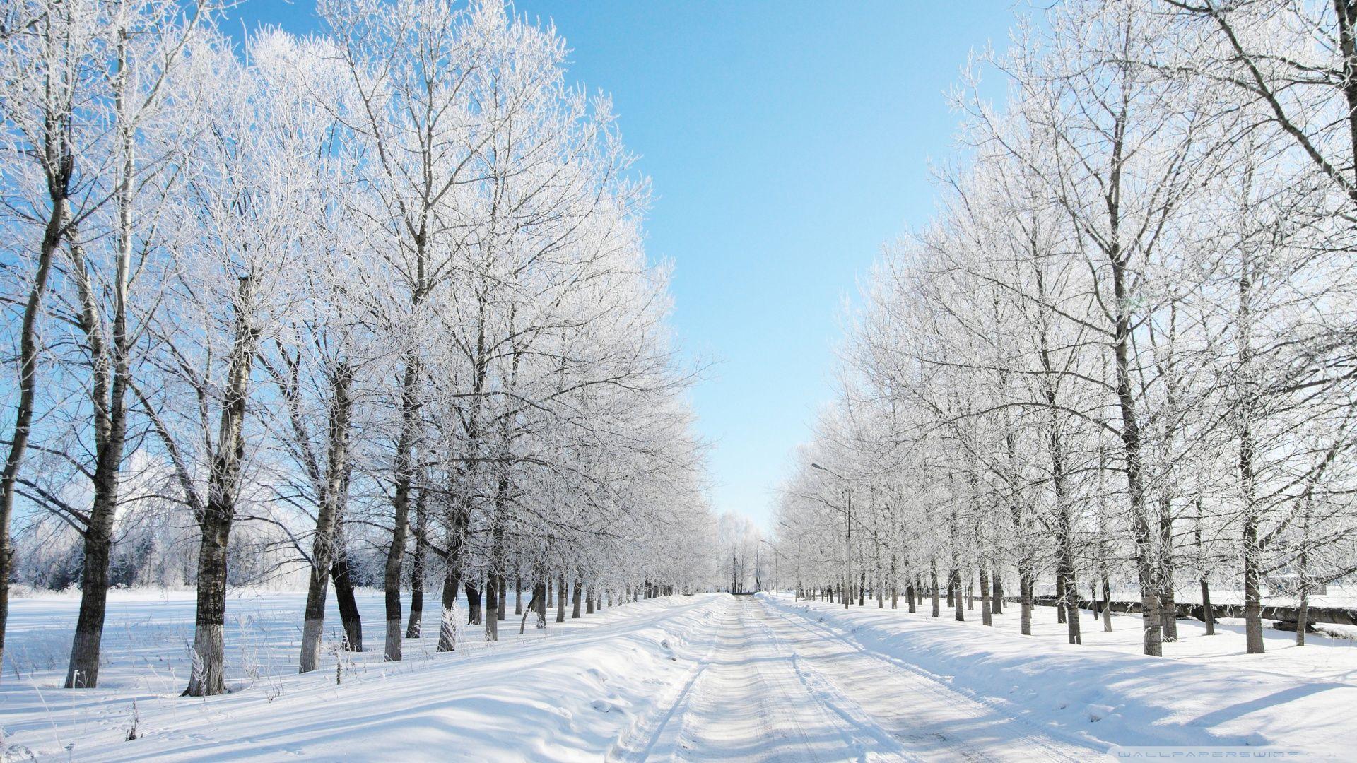 K Ultra HD Snow Wallpapers HD Desktop Backgrounds 19201200 Snow 1920x1080