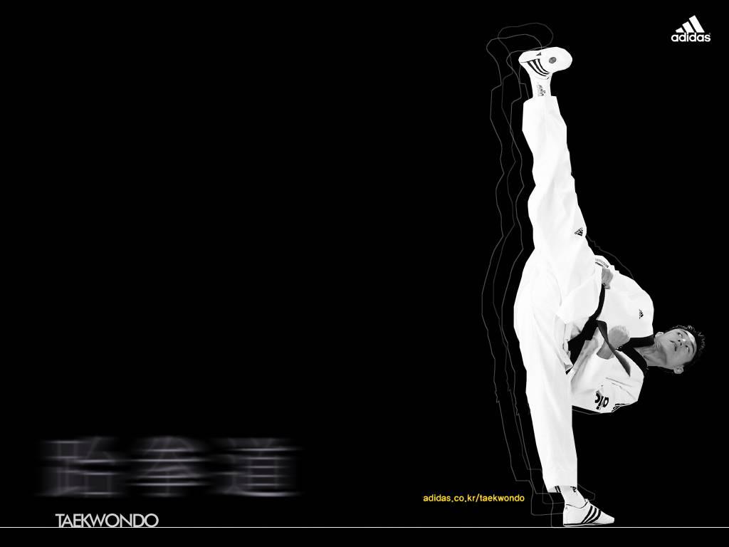 Wallpaper   Taekwondo Wallpaper 1024x768