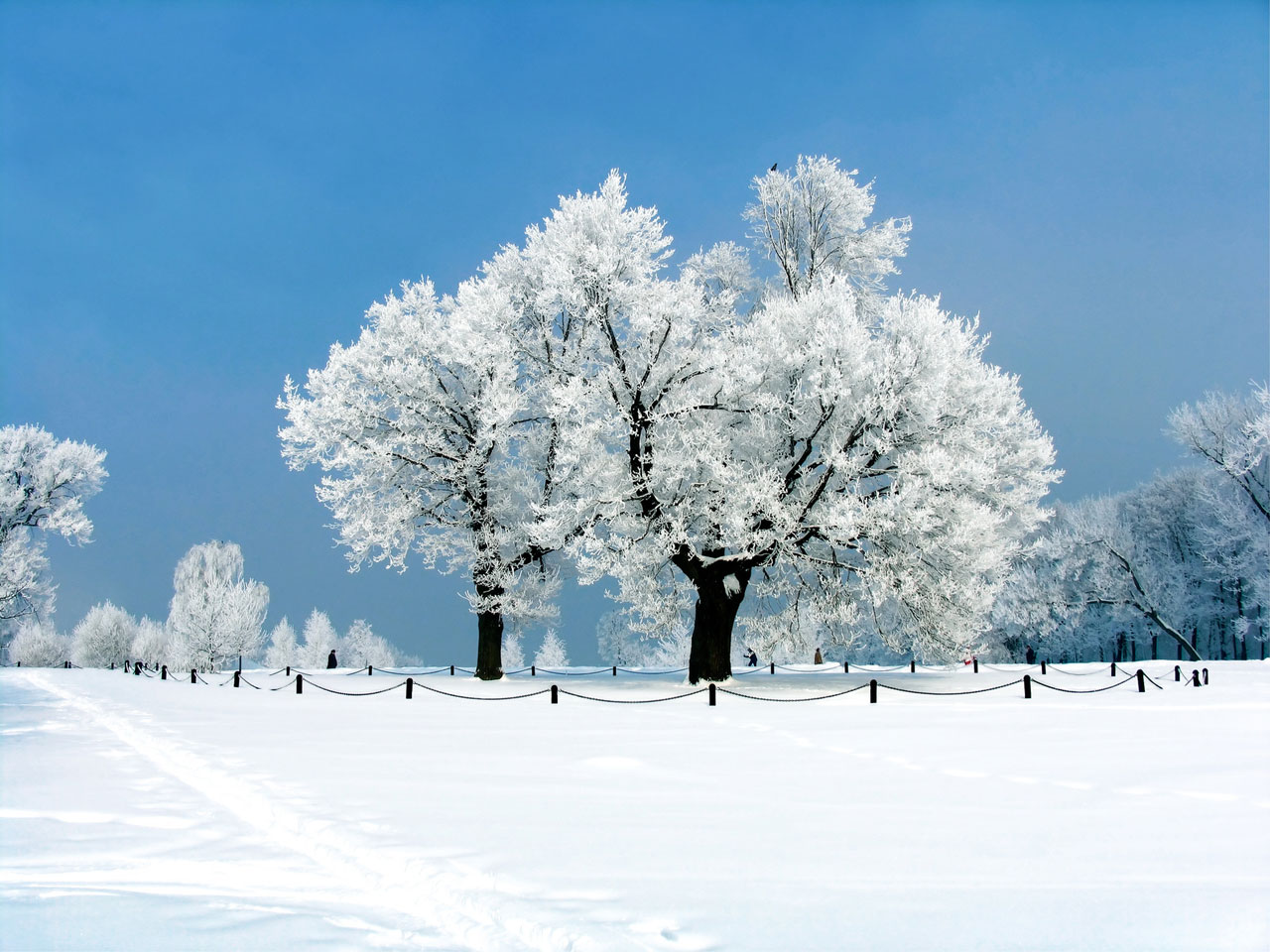 Winter theme Hyves standard background for the Aqua theme 1280x960