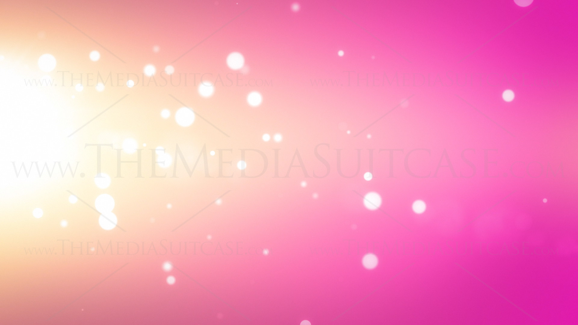 Free download Pink Background Royalty Video Loops [1920x1080