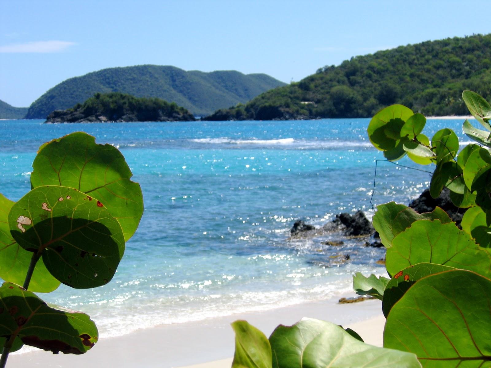 Grenada Beaches 7366 ZWALLPIX 1600x1200