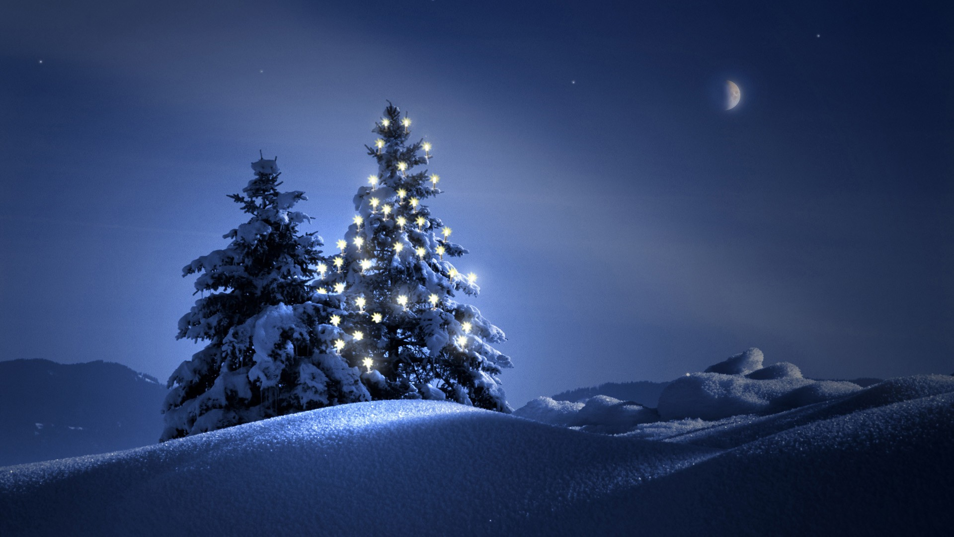 Beautiful Christmas Tree At Night photos Christmas Tree Wallpapers For 1920x1080