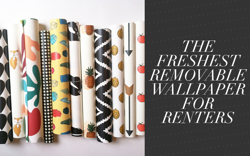 and Prints Removable Wallpaper for Renters So Fresh So Chic 800x500
