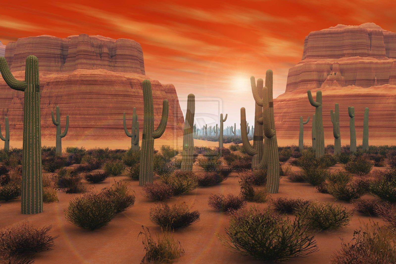 Arizona Desert Pictures For Wallpaper Best Hd Wallpapers 1600x1067