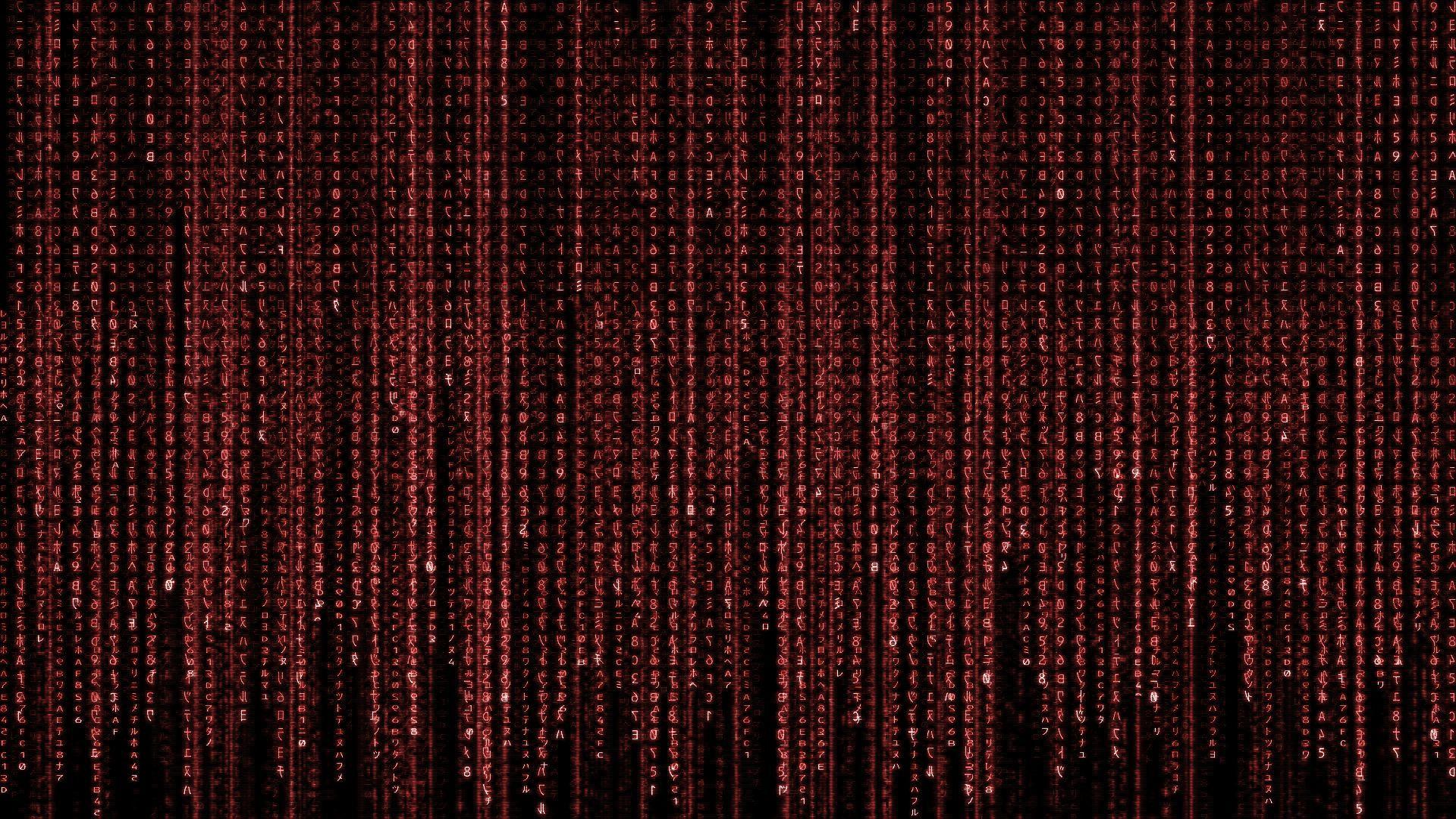 43 blue matrix code wallpaper live on wallpapersafari - Binary background gif ...