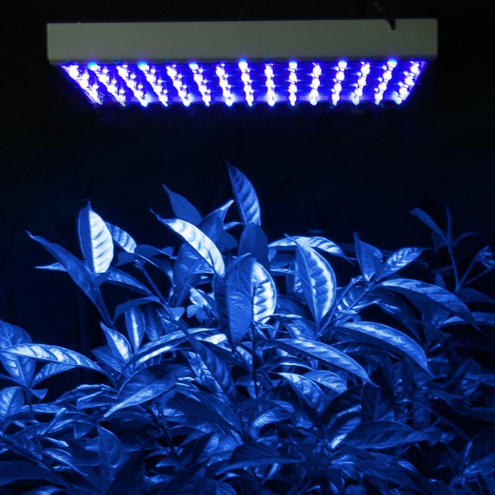 blue led wallpaper - photo #31