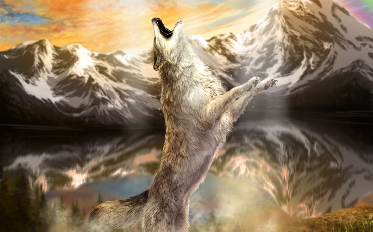 Tags animals art mountains painting wolf wolves 736x459
