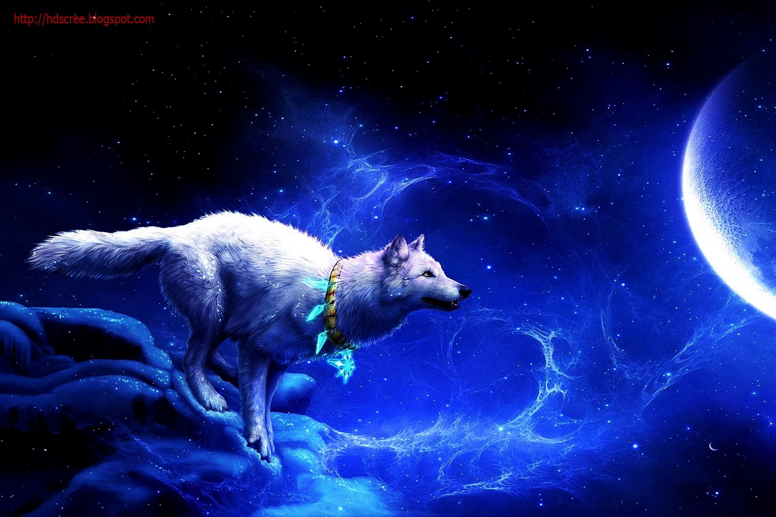 Hd Animal Wallpapers Hd Music Wallpapers: January Wallpapers And Screensavers