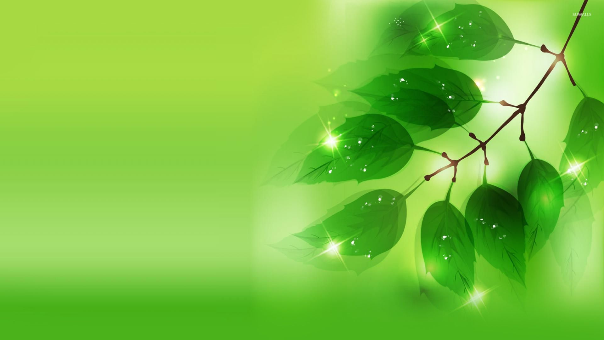 Sparkling leaves on the branch wallpaper   Digital Art 1920x1080