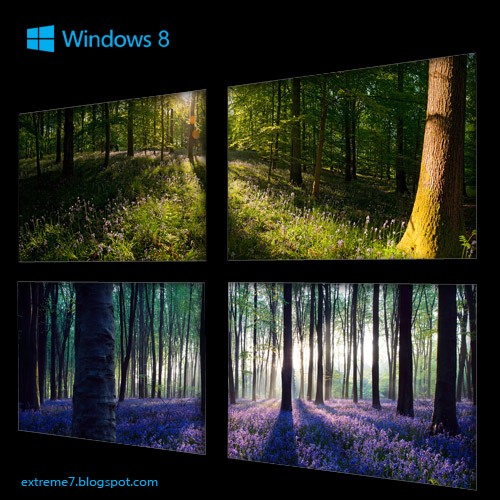 Microsoft Official Forests panoramic theme for Windows 8   extreme 7 500x500