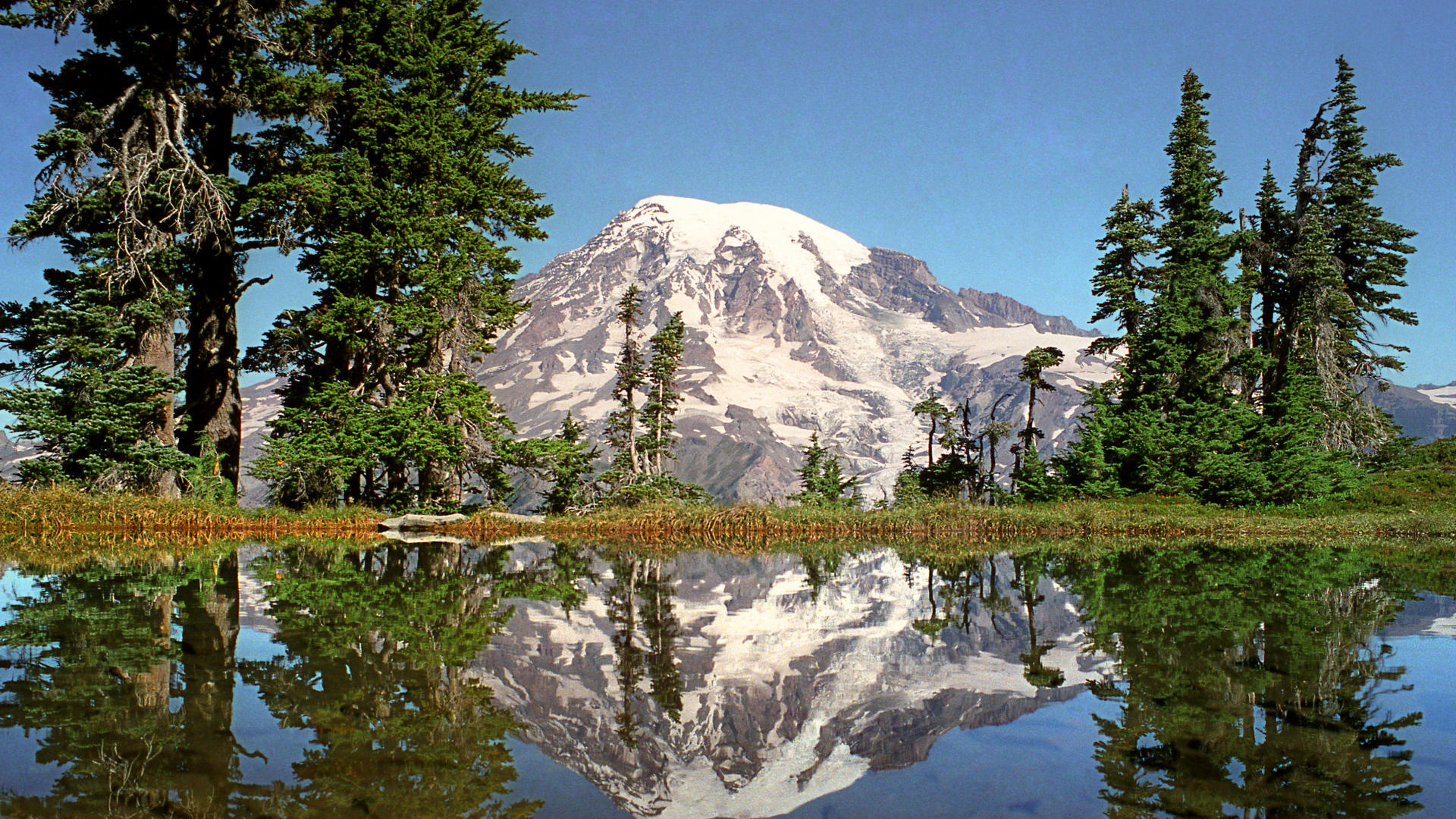 Wallpaper mount rainier national park mount rainier lake reflection 1920x1080