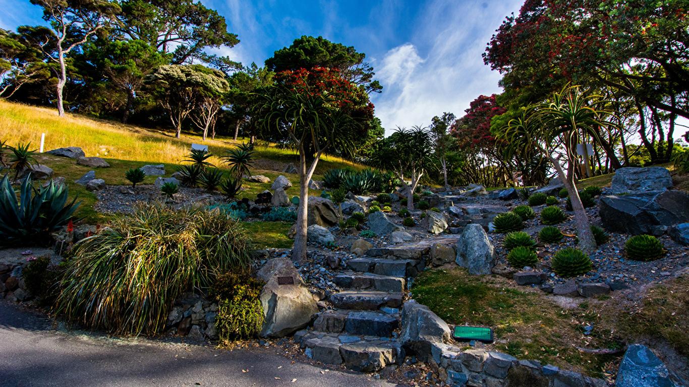 Images New Zealand Wellington Botanical garden Nature 1366x768 1366x768