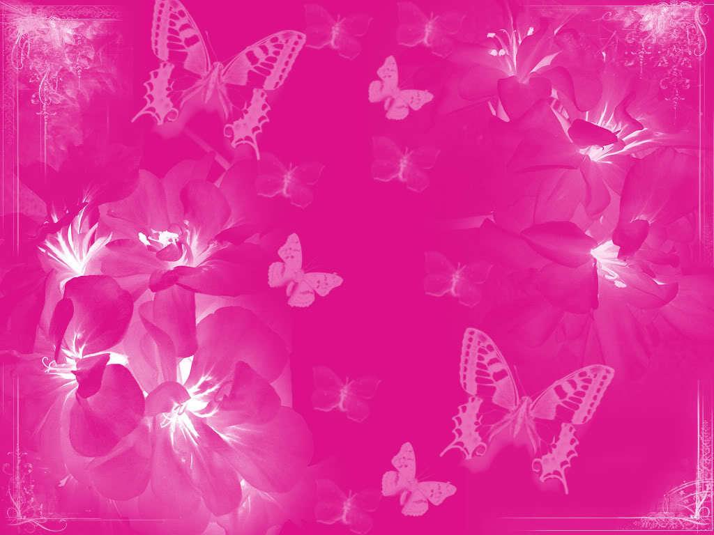 Pink Color Pink wallpaper 1024x768