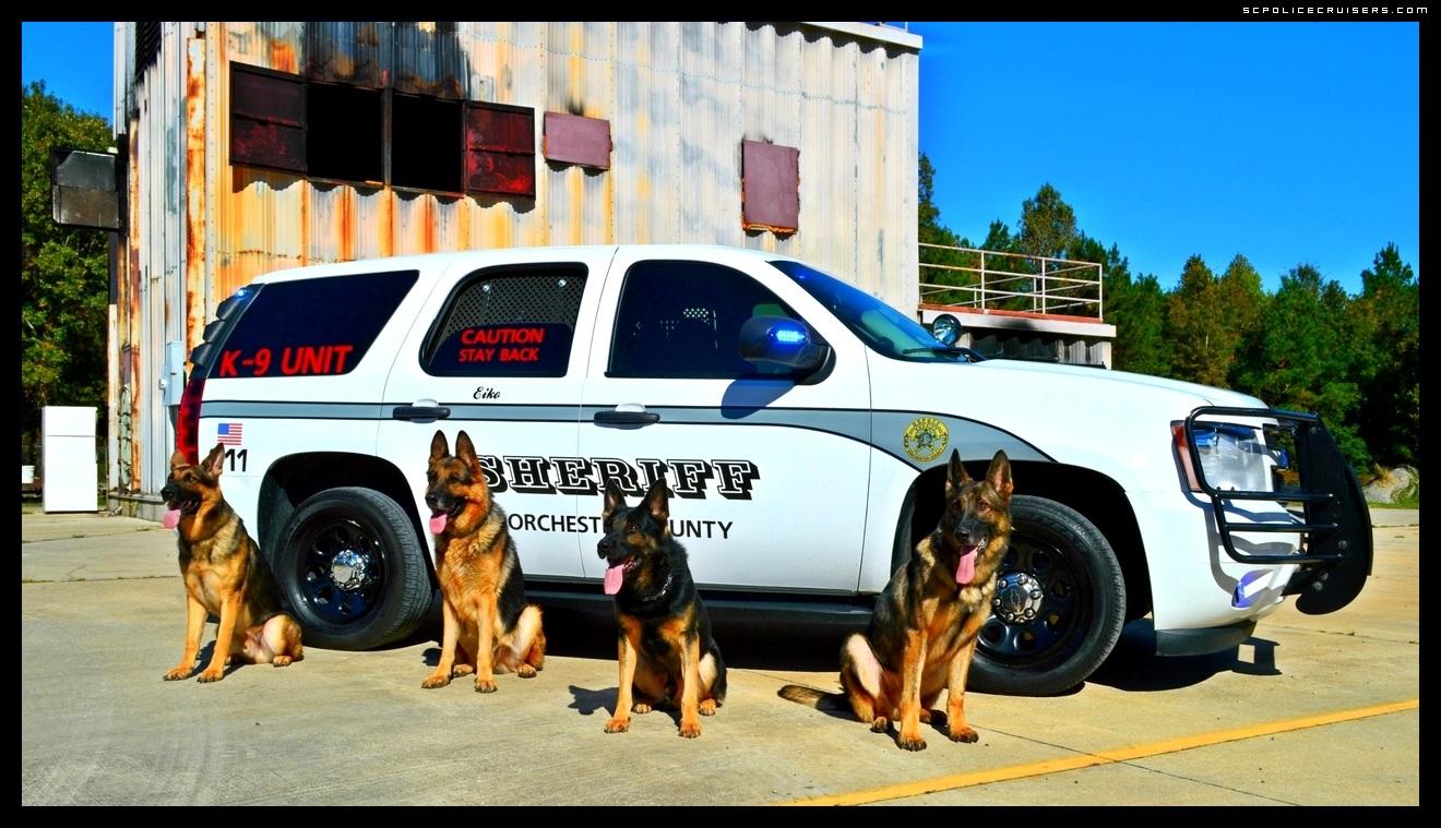 Dorchester County Sheriffs Office K 9 Unit Desktop Sizes Available 1320x759